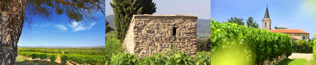 Vignobles Foncalieu