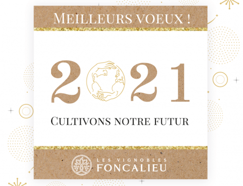 The Vignobles Foncalieu wish you all the best for 2021
