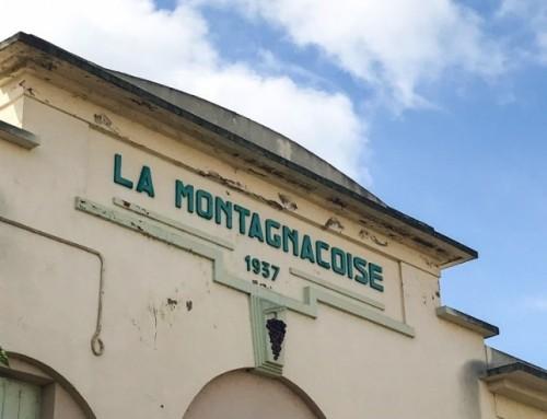 The Vignerons de Montagnac join the Foncalieu cooperative union